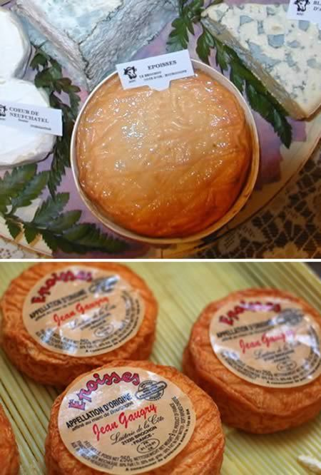 Most Bizarre Types Of Cheese