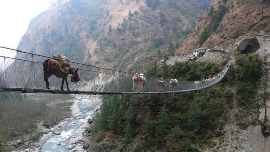 Top 10 Most Scariest Bridges In The World