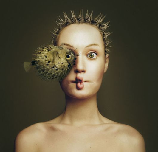 Surreal Photos Created By Photographer By Replacing Her Own Eye With Different Animals
