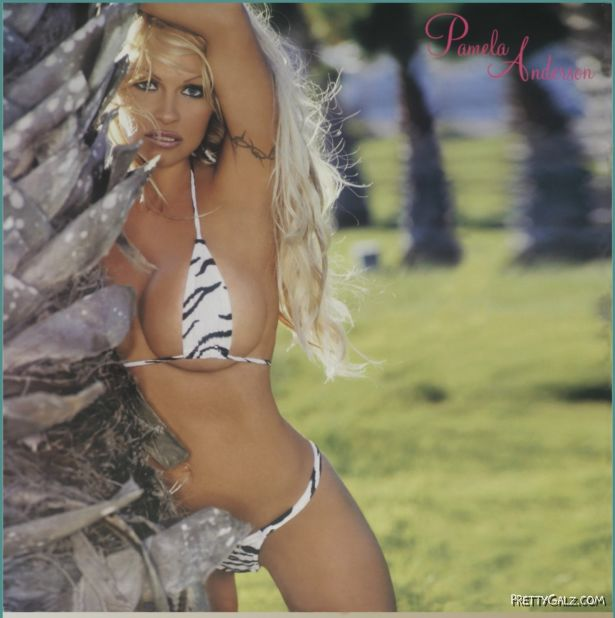 Old is Gold Pamela Anderson